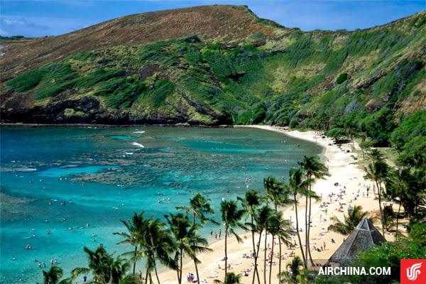 ve may bay di hawaii gia re